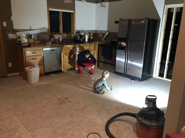 Living through a Kitchen Remodel 3
